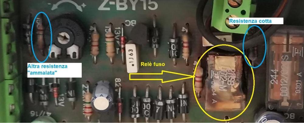 101084015_ZBY-15guasta(1).thumb.jpg.85fa6f4420193bde19662f03bb2ab3d0.jpg