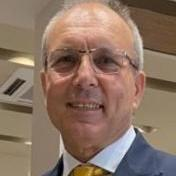 Stefano Dalmo